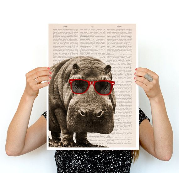 Cool Hippo poster, A3 poster ,funny animal art, Wall art nursery ...