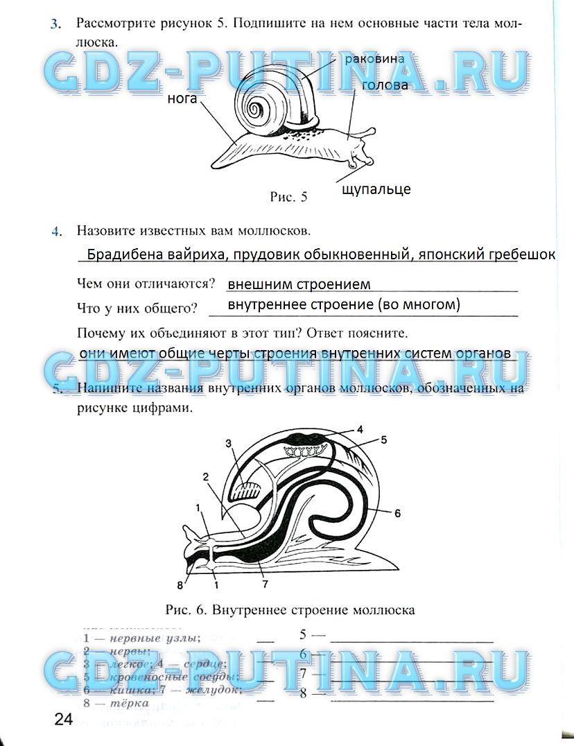 Найти гдз по русскому-языку 5 класс разумовская и львова и ешёкапинос и львов