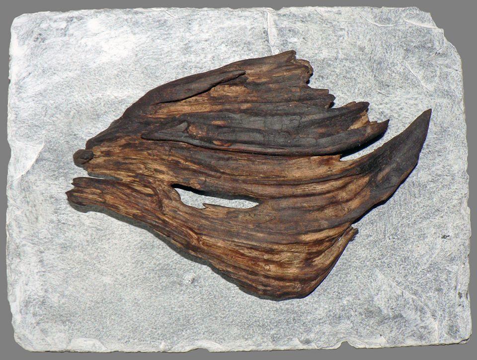 Yann Viau, bois flotté, driftwood, schwemmholz, cire, wax, ardoise, poisson-lune, brume, loire, sculpture naturelle,