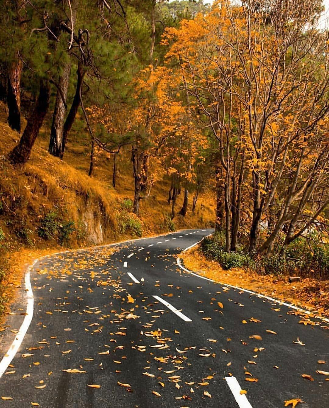 Autumn Cozy, Country Roads