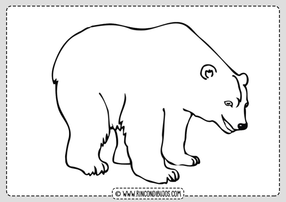 Dibujo Oso Polar Para Colorear Rincon Dibujos Oso Polar Dibujo Dibujos De Osos Oso Polar