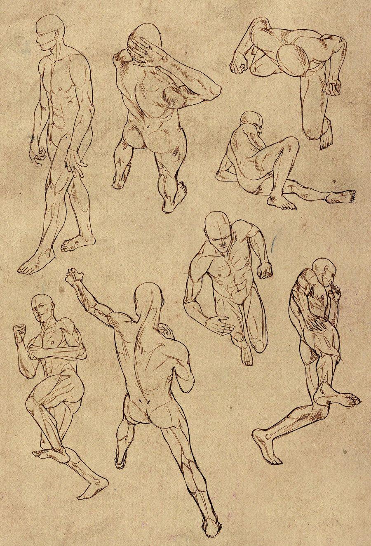 El Arte de Lovely-Lina: Ayuda para dibujar la anatomía masculina ...