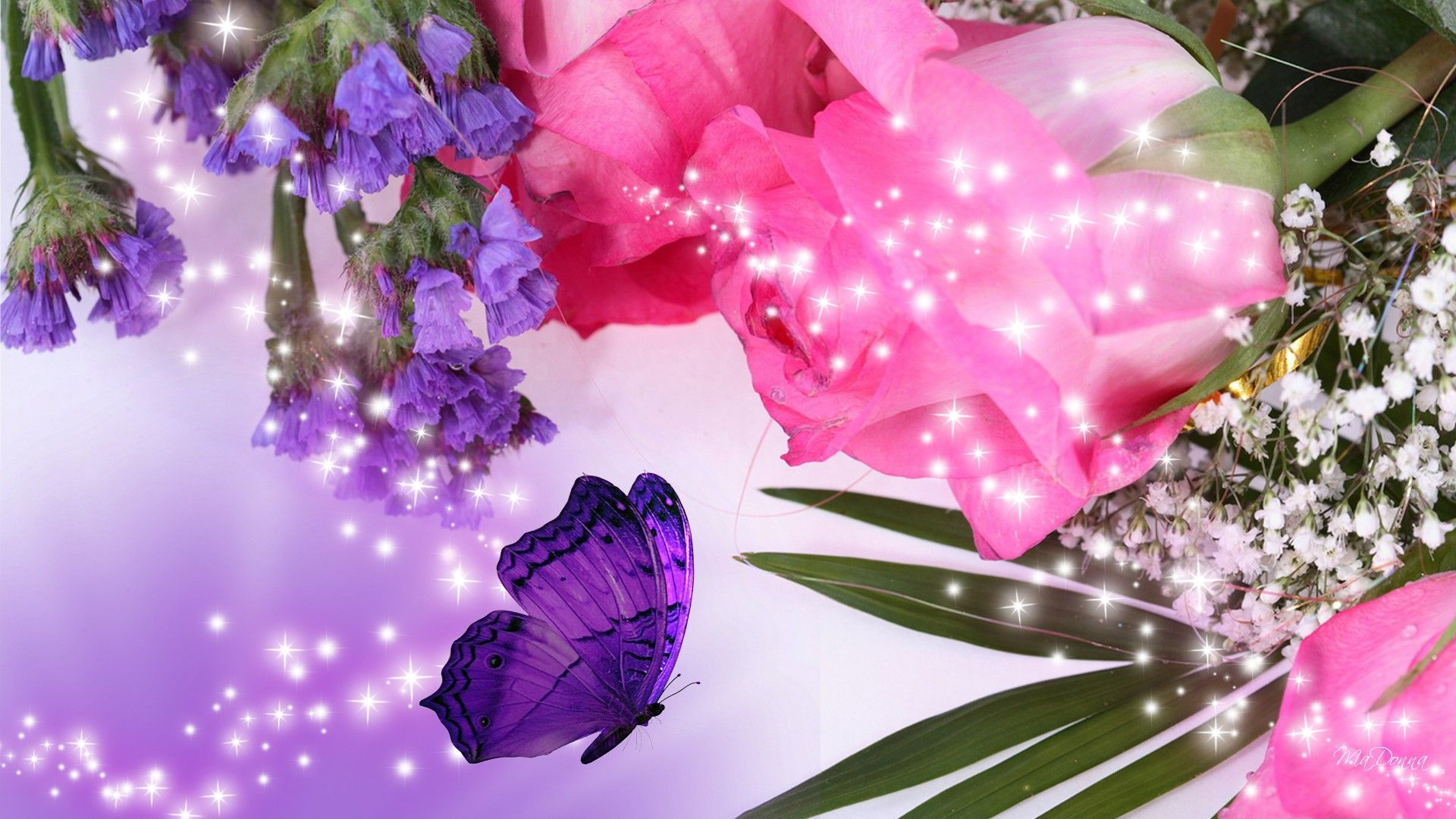 purple flowers desktop wallpaper, purple flower images, new