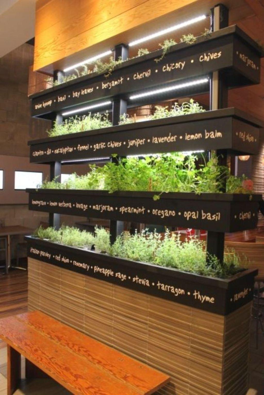 extraordinary indoor garden design and remodel ideas for on indoor herb garden diy apartments living walls id=47982
