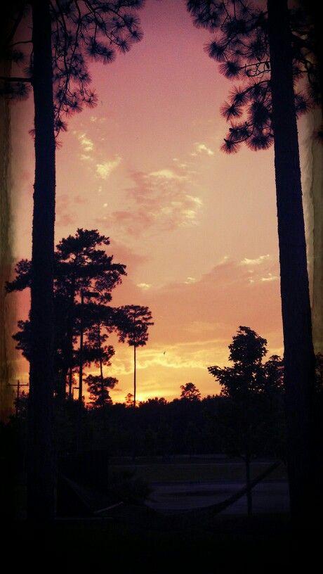 "Sunset over ""my"" hammock...Mark Mason"