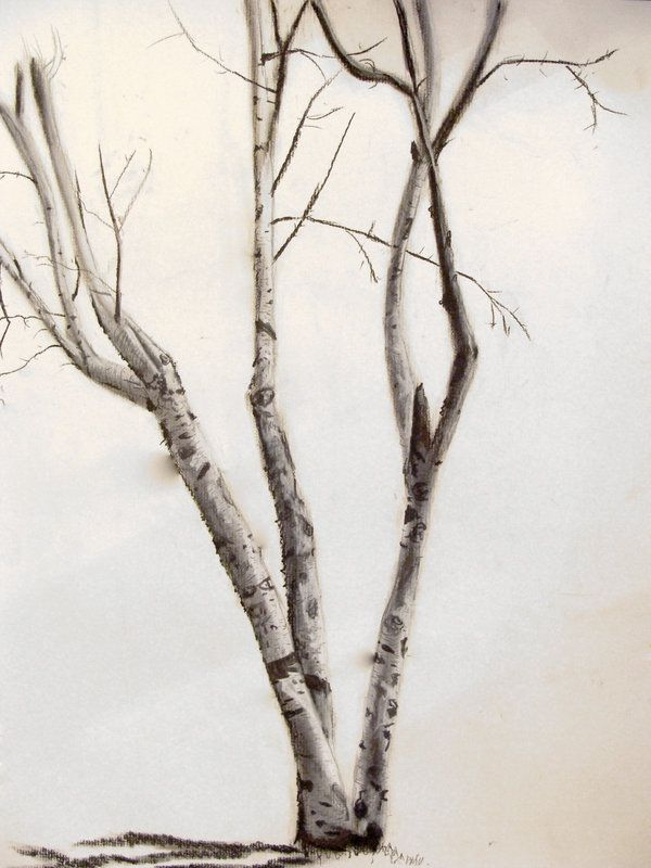 Love this birch tree | Art I love | Pinterest | Pinturas