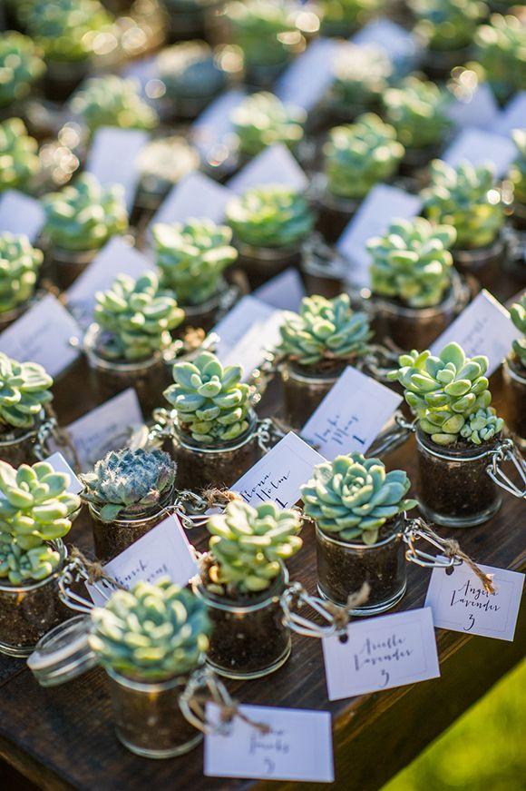 Summer Wedding Favor Ideas Diy : diy summer wedding favor ideas summer wedding favors succulent wedding ...
