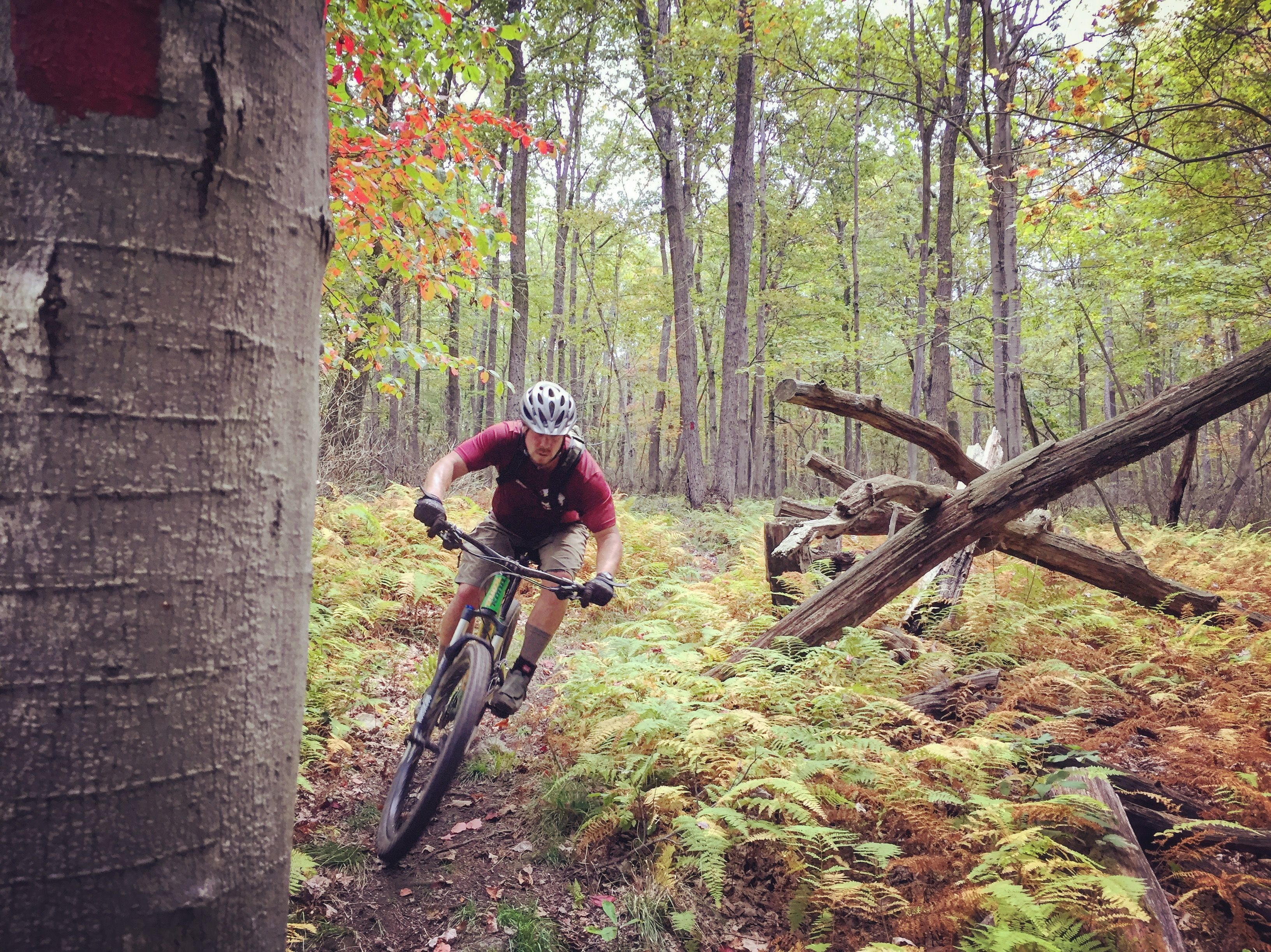 Mountain biking at Quebec Run Wild Area. | Ohiopyle state ...