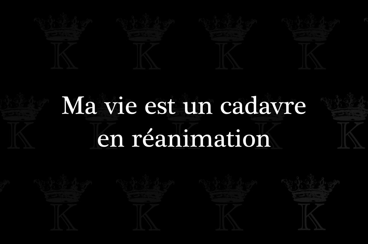 Kradify Ma Vie Est Un Cadavre En Réanimation Citation