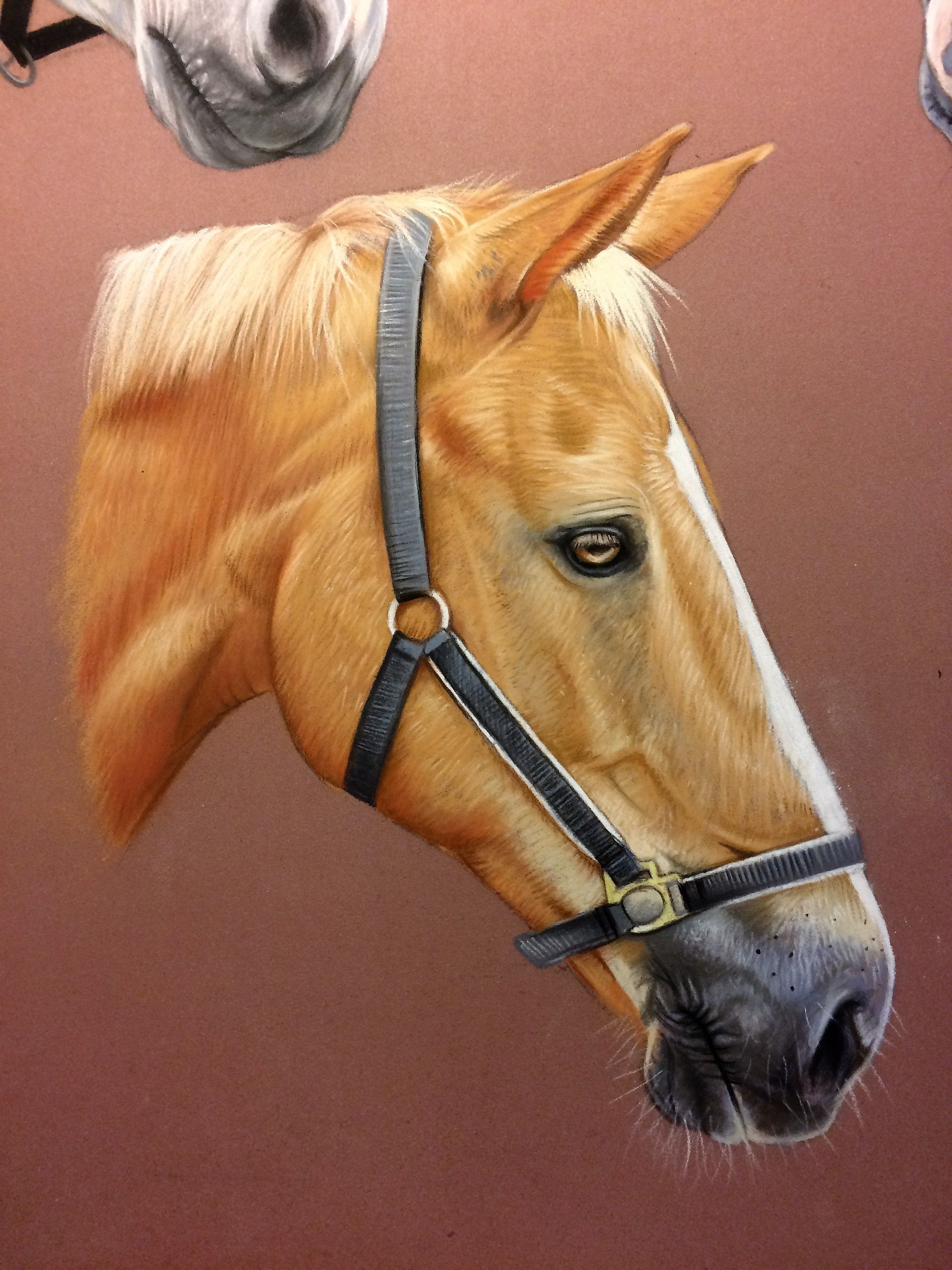 Portrait Equin Au Pastel Sur Commande Detail D Une Composition