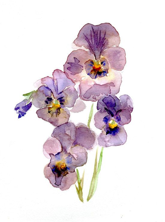 Original violet pansy watercolor painting flower art for Dujardin willems