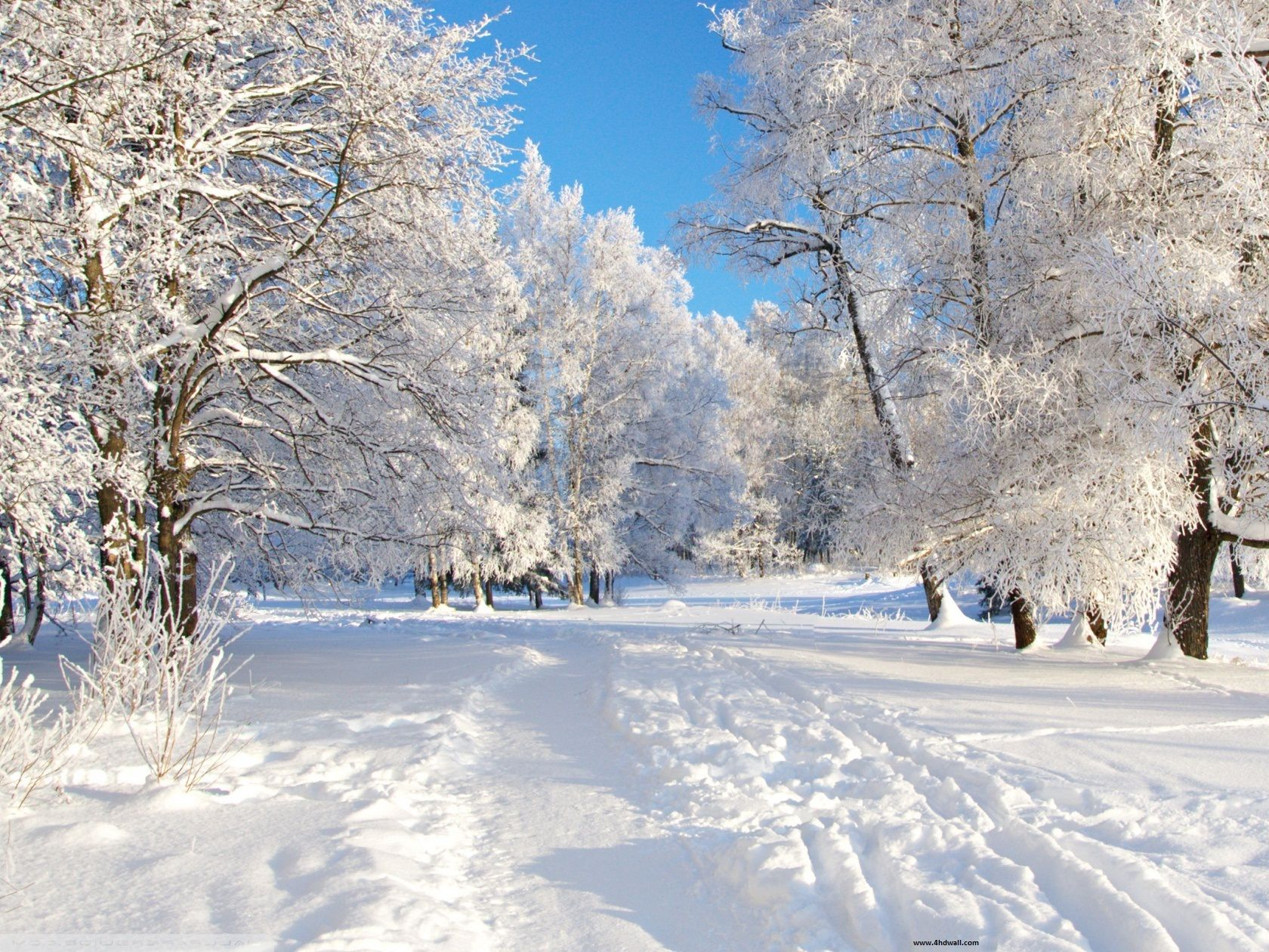 Download Free High Definition Winter Wallpapers Free