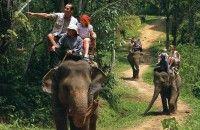 Menpar: 2016 Percepatan Pembangunan Pariwisata Indonesia