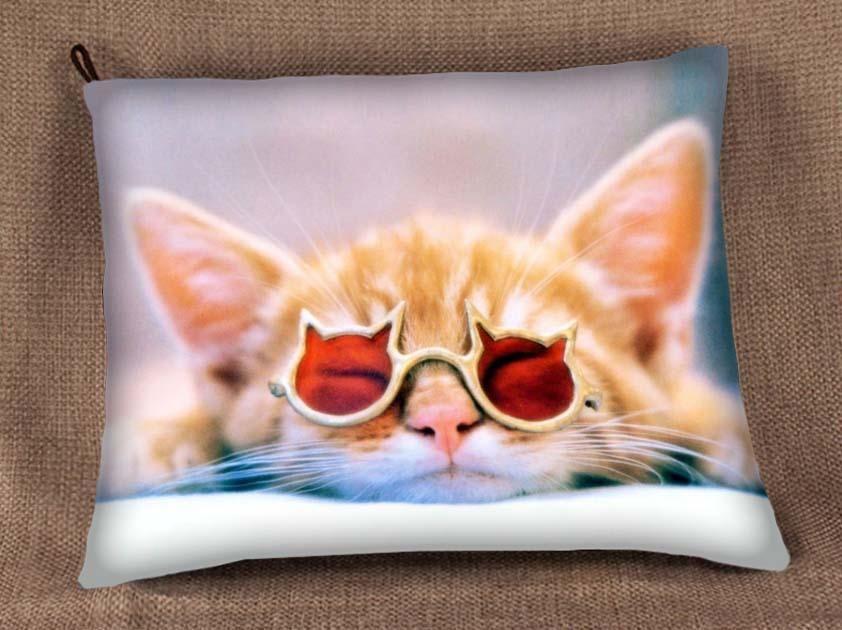 Poduszka Jasiek Z Nadrukiem Kicia Kot Wenecja Biz 3957671271 Oficjalne Archiwum Allegro Cats Kittens Cutest Funny Cats