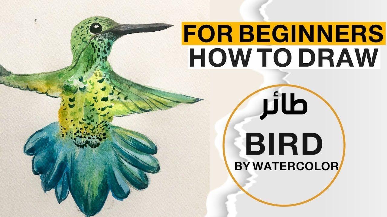 كيف ترسم عصفور بالالوان المائية رووعة للمبتدئين How To Draw A Bird In Wa Drawings Bird Draw