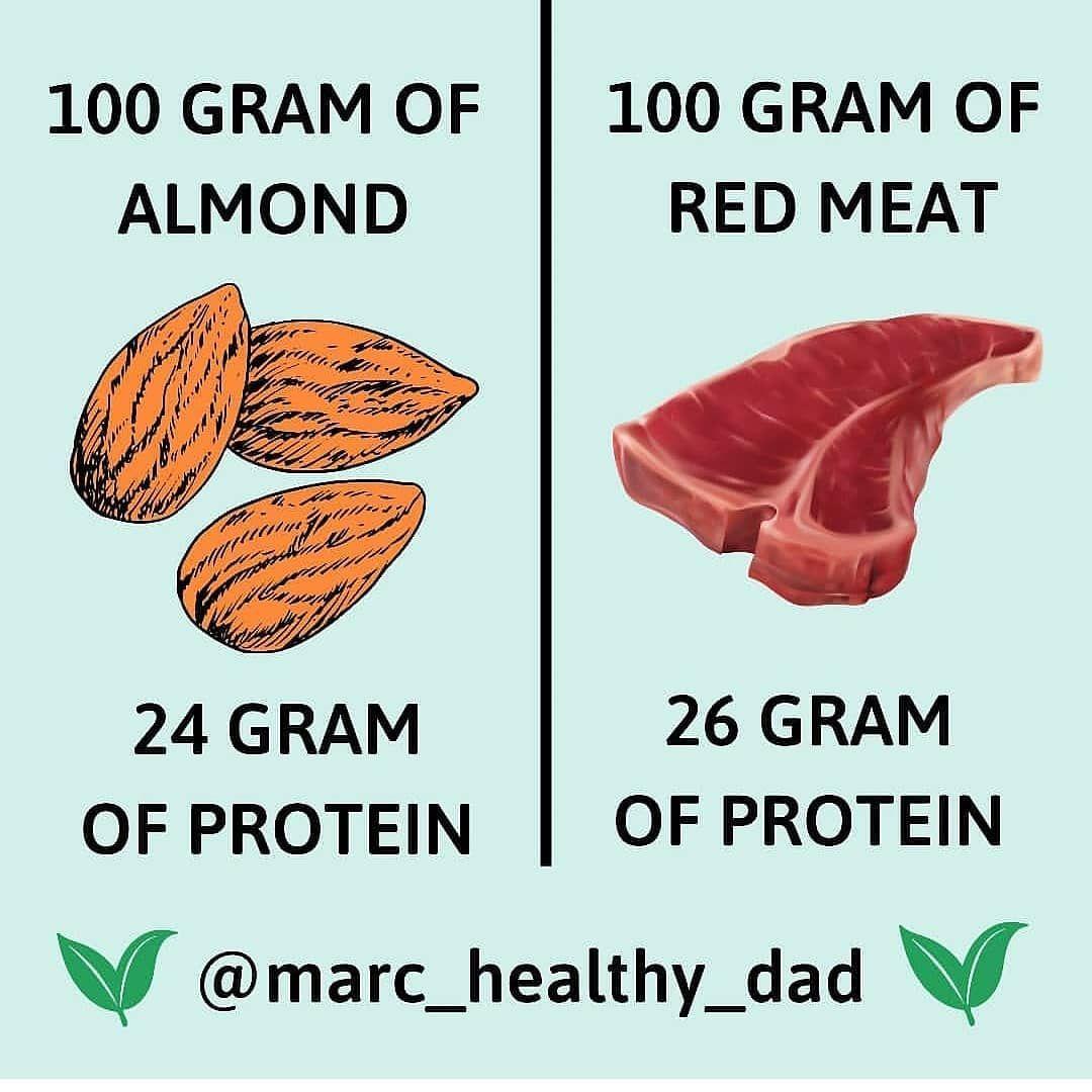 Build muscle with vegan protein!!  ..  ..  ..  #vegan #veganfood #veganlifestyle #veganchoices #veganlife #vegandad #veganprotein #veganproteins #proteinnut #proteins #protein #proteinas #healthylifestyle #healthyfood #health #healthyeating #healthychoices #bodyhealth #goodnutrition #eatvegan #eat #eatclean #eatnut #healthylifestyles #healthyfoodideas #nutritionfacts
