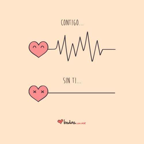 Compartilhe frases cheias de carinho com o amor da sua vida! Share phrases full of affection with th