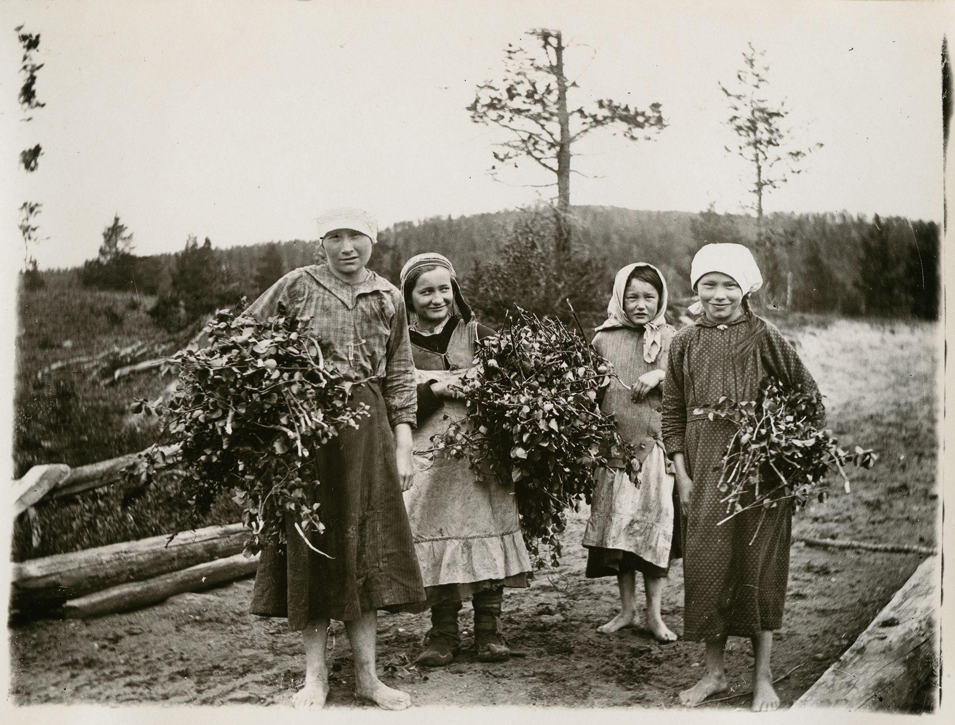 Perinteen ja nykykulttuurin kuvakokoelma   Suomalaisen Kirjallisuuden Seura