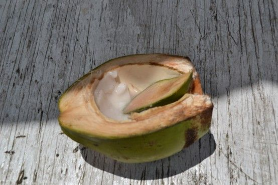 Enjoying coconut water & coconut jelly