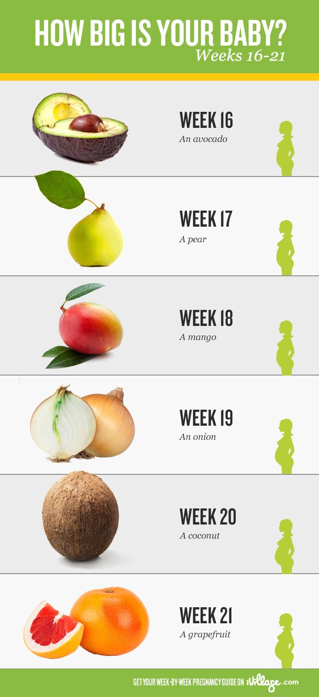 Week by pregnancy updates ivillage check it out http also weeks months trimester conversion chart for leap rh pinterest
