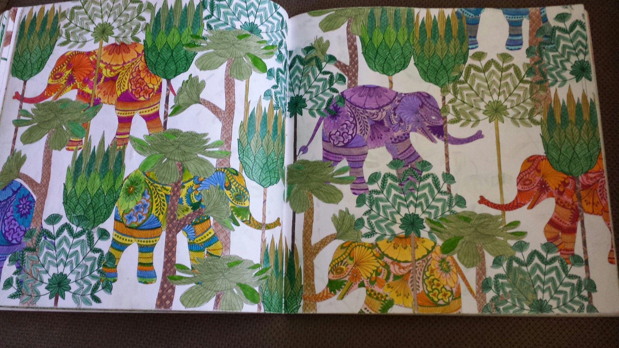 Millie Marotta Tropical World Coloring Book Millie Marotta Tropical Wonderland Millie Marotta Tropical Coloring Books