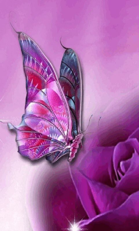 Free Purple Butterfly Live Wallpaper APK Download For ...