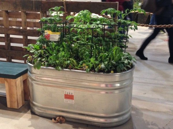 15 Tips For Trough Planters, From LaManda Joy. Peterson Garden Project. And  A