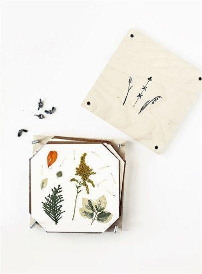 Wie mache ich ein Herbarium? Tausende Ideen für das kreative Hobby …