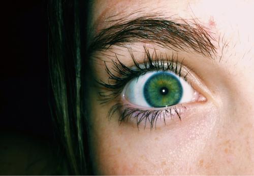 Green Eyes Art Bright Eyelashes Long Cool Lashes Green Freckles Tumblr Eyes Eye Makeup Makeup