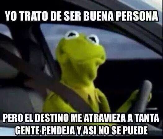 fdaa081df9ad77ddaa9a16861153041a la rana rene humor pinterest humor, memes and mexicans