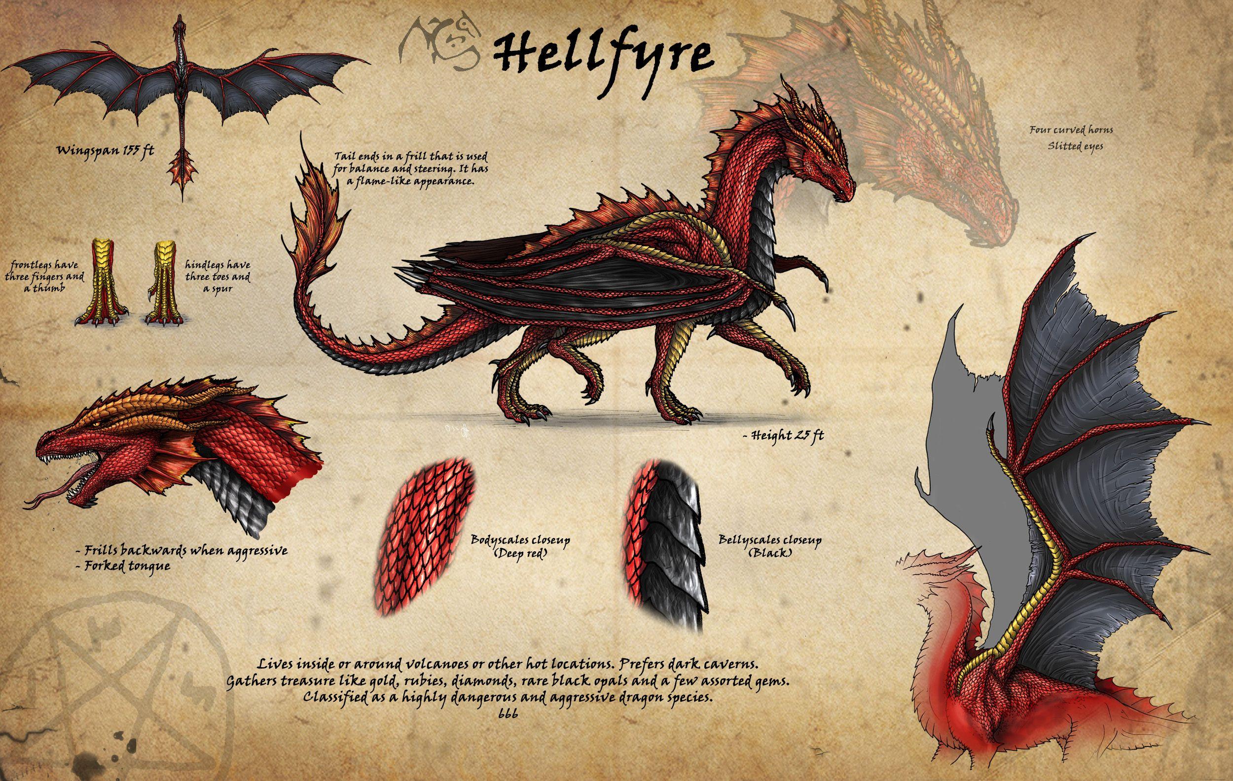27++ Dragon frills information