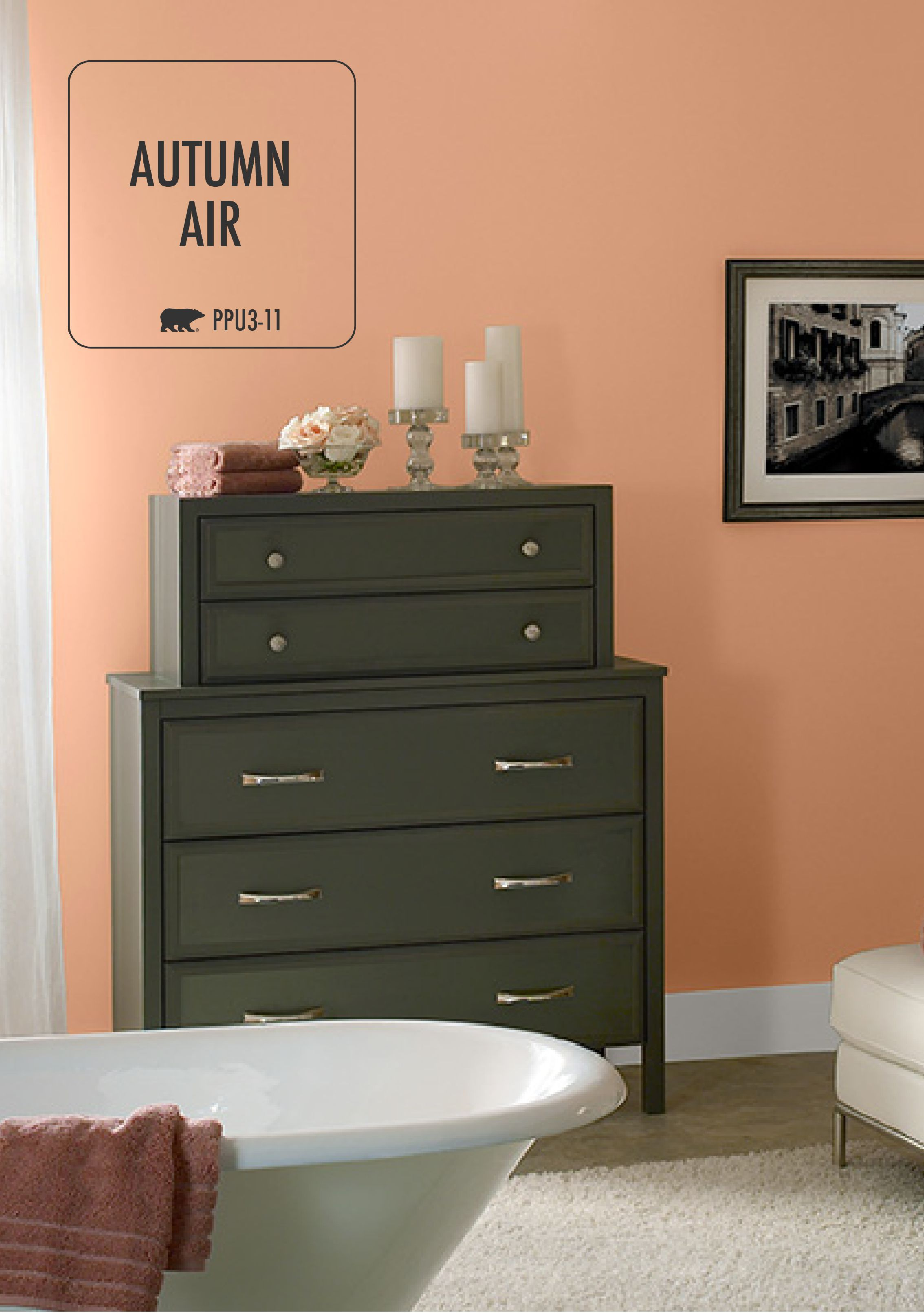 Love The Look Of Combining BEHR Paint In Autumn Air Orange With Dark  Furniture Pieces? Then This Room Decor Is Sure To Inspire You To Add A  Unique Color ...