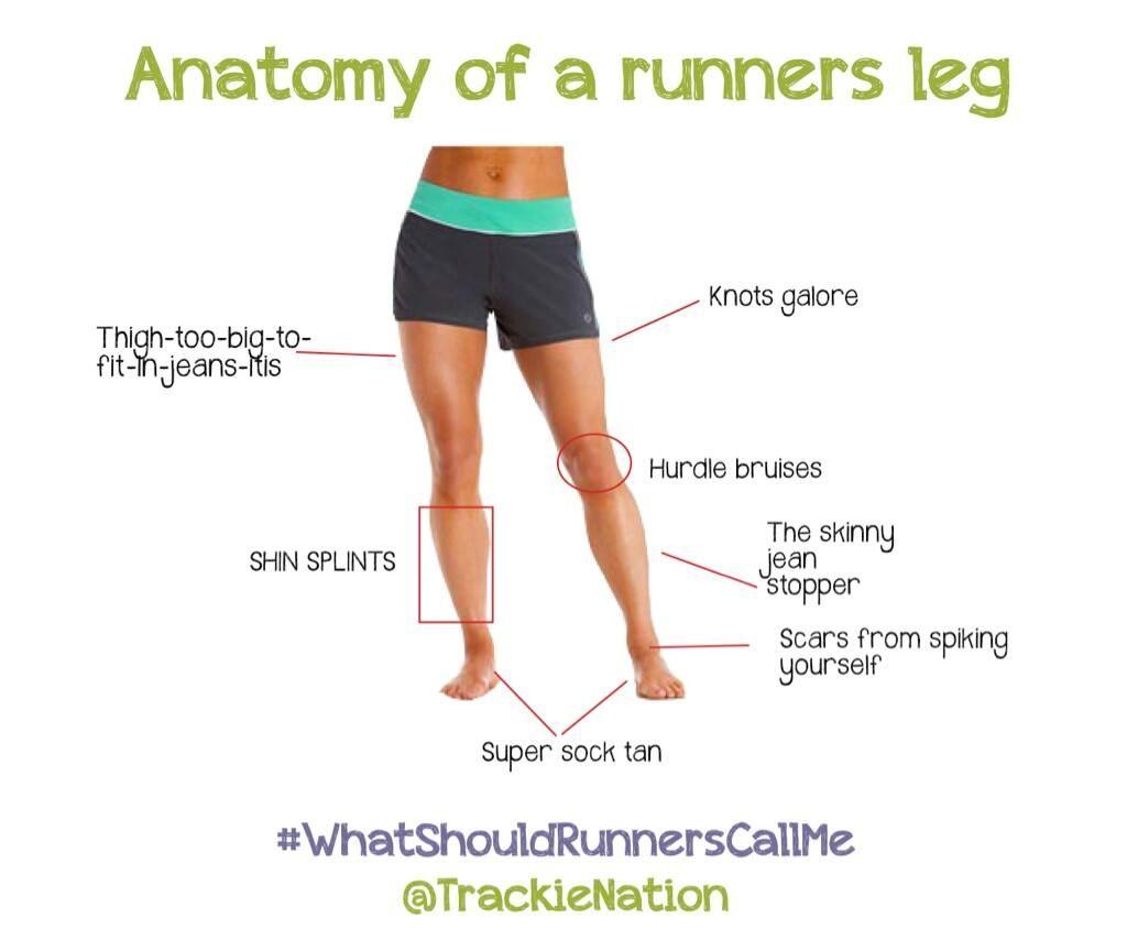 TrackieNation : A runners leg anatomy http://t.co/IR9MgueoSN ...