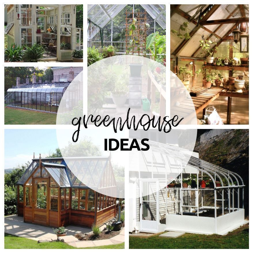 DIY Greenhouse Design Ideas let's see all from here : https ... on garden greenhouse design, citrus greenhouse design, vegetable hydroponics, raised bed greenhouse design, vegetable gardening, strawberry greenhouse design, vegetable flowers, poultry house design, high tunnel greenhouse design, vintage greenhouse design, hydroponic greenhouse design, mushroom design,
