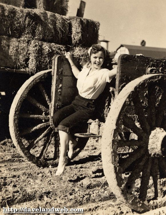 "Shirley Temple, 1943 ...""Photographer Andre de Dienes was assigned to pose me on a haystack at the nearby Arden Dairy Farm, coincidentally the home of Tillie Temple from Tillamook, my gift cow from a distant birthday."""