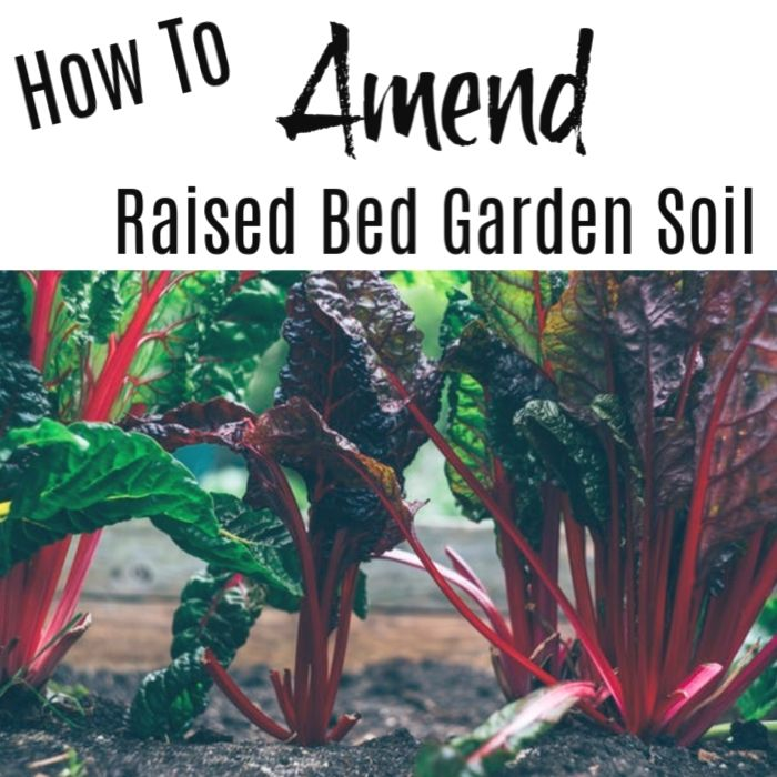 How To Amend Raised Garden Bed Soil Https://dianfarmer.com