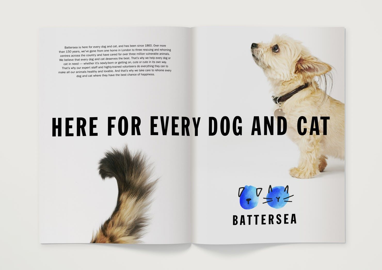 Battersea Pentagram Dog Cat Dogs