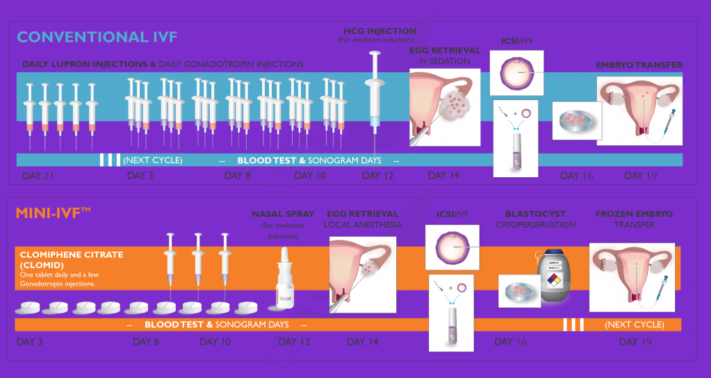New Hope Fertility Clinic compared conventional and mini IVF procedures