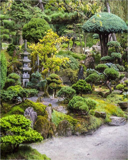 Japanese botanical garden Herbarium New York