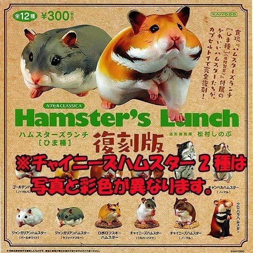 Amazon Com Capsule Classica Hamster S Lunch Himashu Reprint All 12 Species Set Kaiyodo Gachapon Toys Games Hamster Animal Figures Species