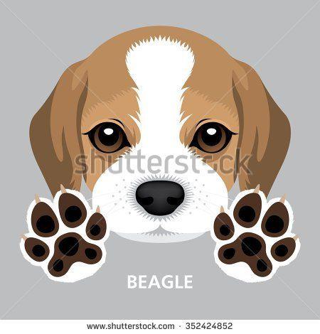 Vector Illustration Portrait of Beagle Puppy & Dog Paw. | beagle mix ...