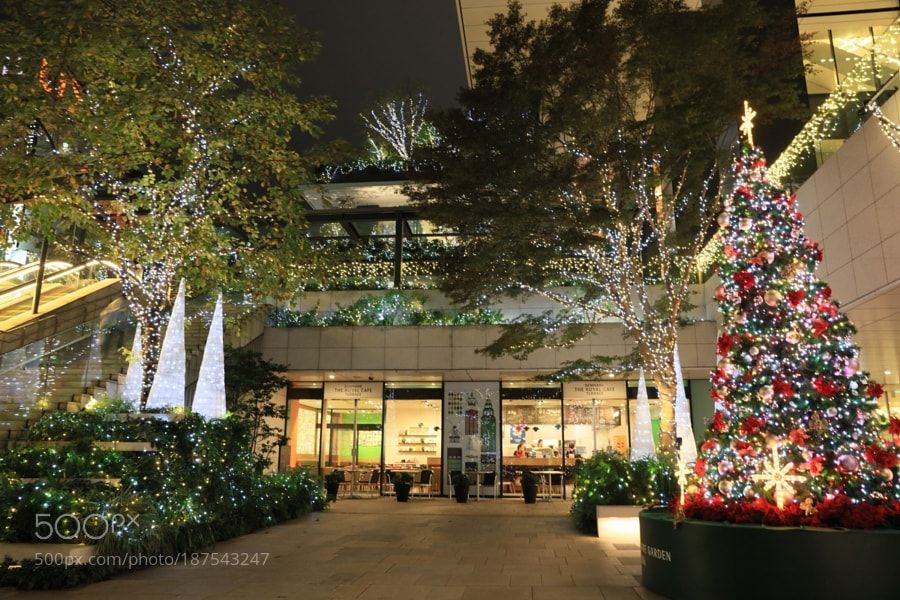 Popular on 500px : Illumination  Tokyo Square Garden by gozo_cedars