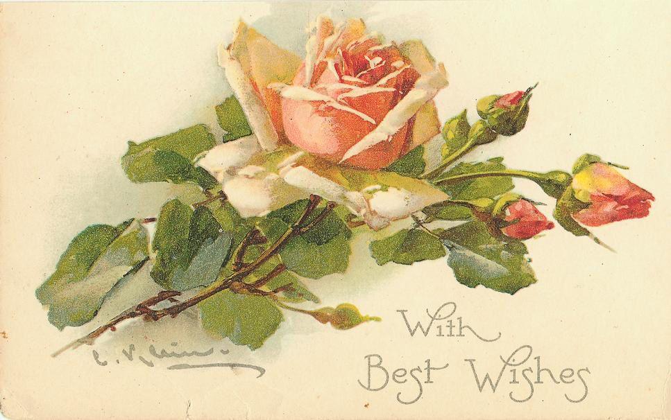Советские открытки с розами днем рождения, времена года лето