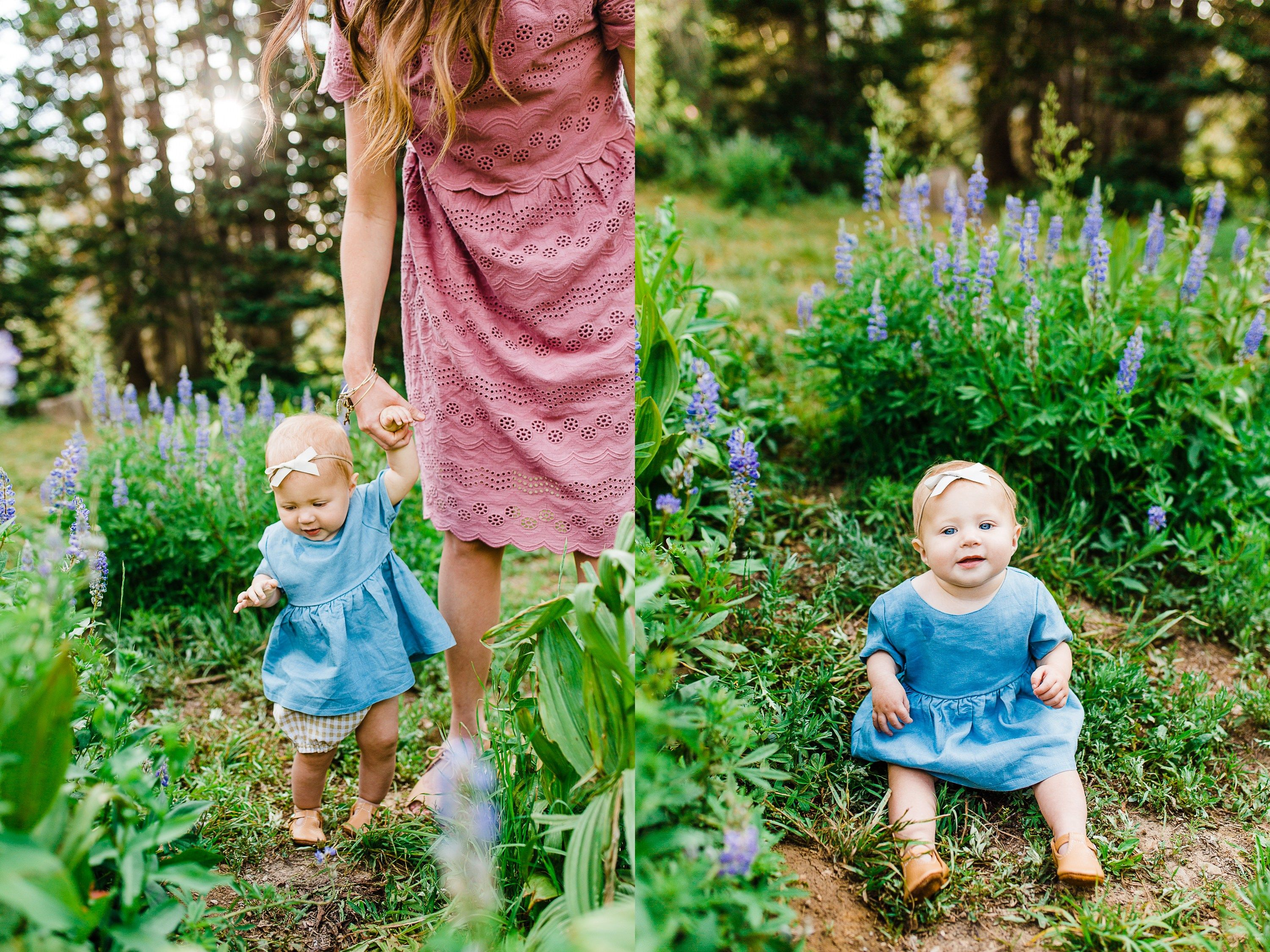 Spooner Family | Albion basin, Summer family pictures and Family ...
