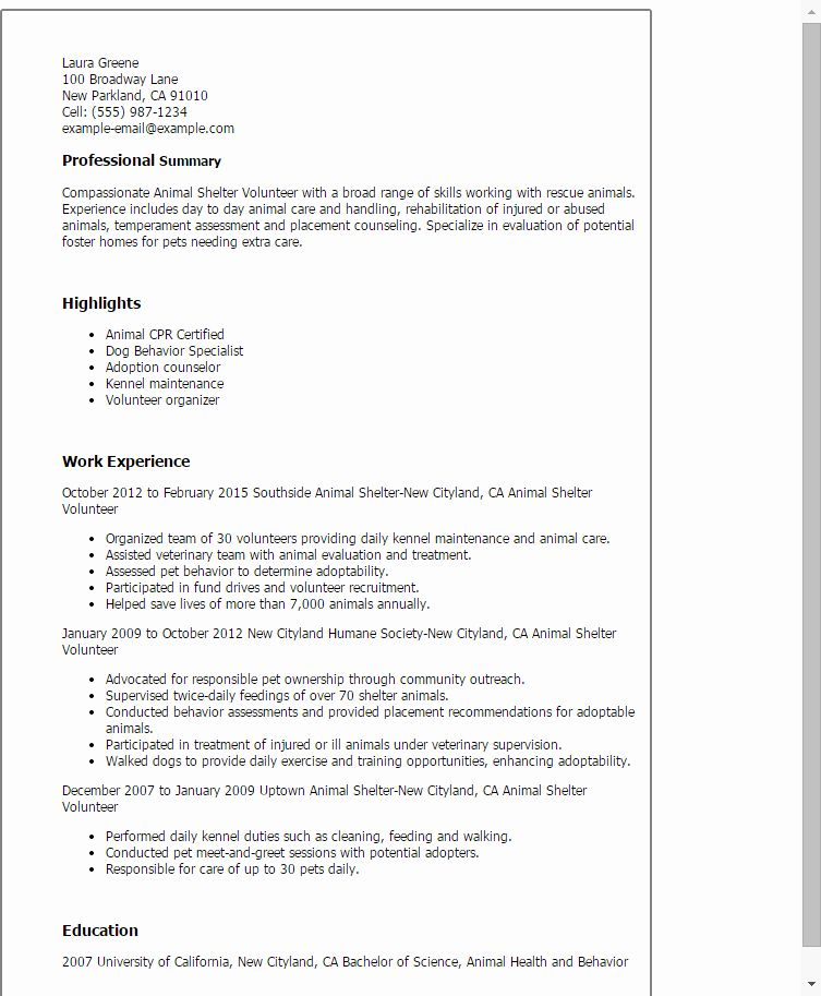 where to place volunteer experience on resume