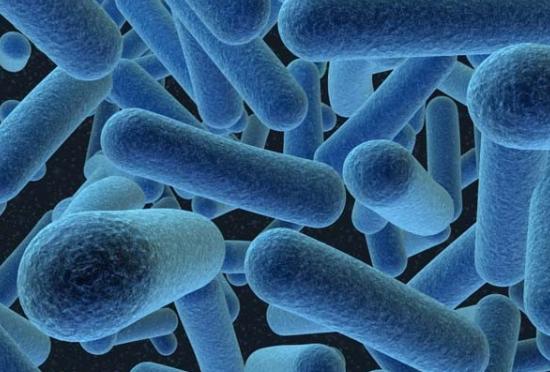 Syarat-Syarat Pertumbuhan Mikroorganisme Beserta Penjelasannya - http://www.gurupendidikan.com/syarat-syarat-pertumbuhan-mikroorganisme-beserta-penjelasannya/