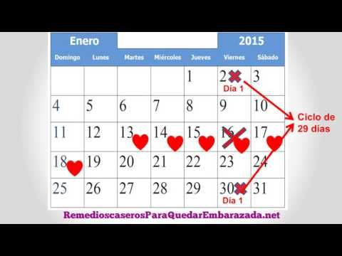 Cuales Son Los Dias Fertiles Para Quedar Embarazada Como Calcular Mis Dias Fertiles Youtube Womens Health Calendar Periodic Table