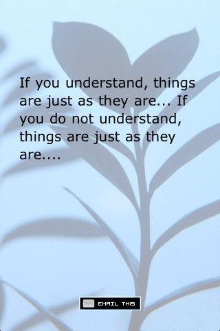 funny zen quotes