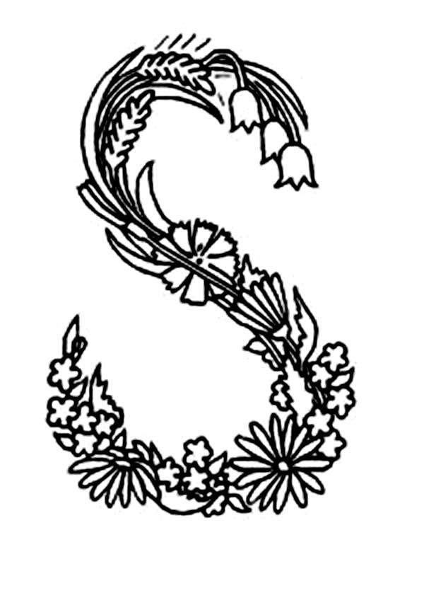 Alphabet Flowers Letter F Coloring Pages  Batch Coloring