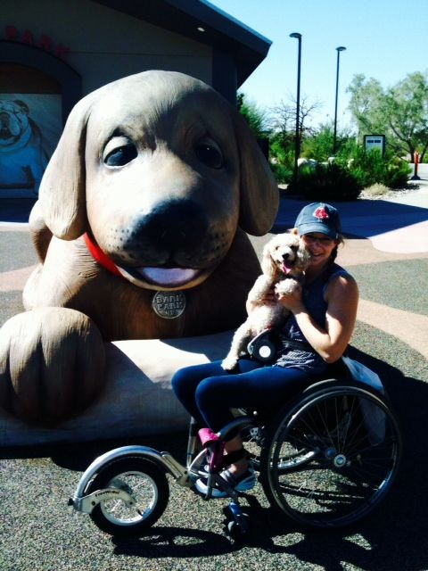 Switching Things Up Today Here S A Story About An Able Bodied Dog Who Helps Her Paralyzed Mom Http Lessonsfromaparaly Paralyzed Dog Dog Wheelchair Dog Help
